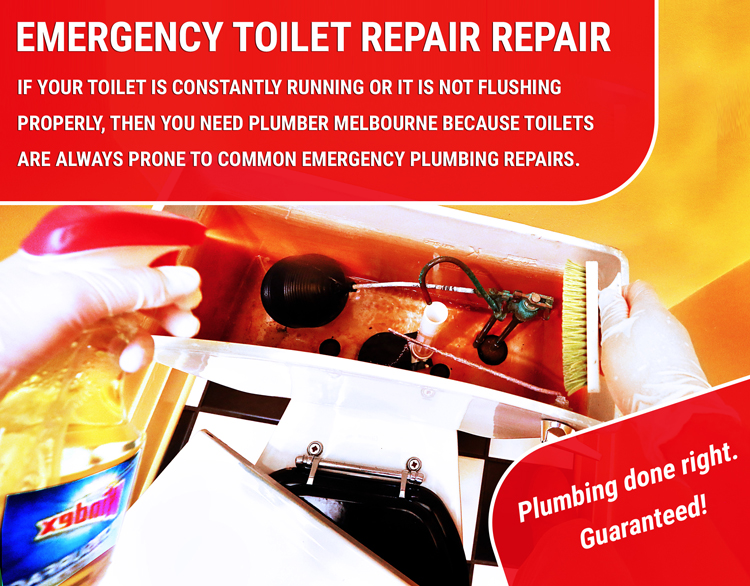 Emergency Toilet Repair Indented Head