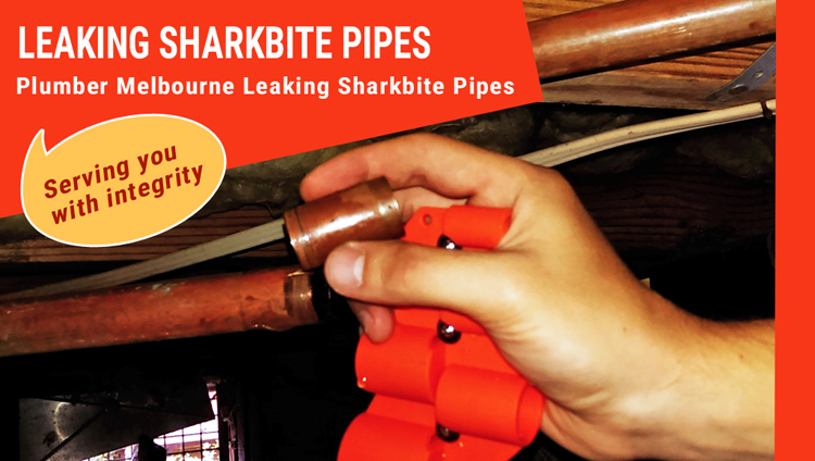 Leaking Sharkbite Pipes Repair South Wharf