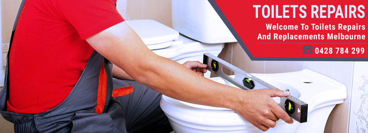 Toilets Repairs And Replacements Doveton