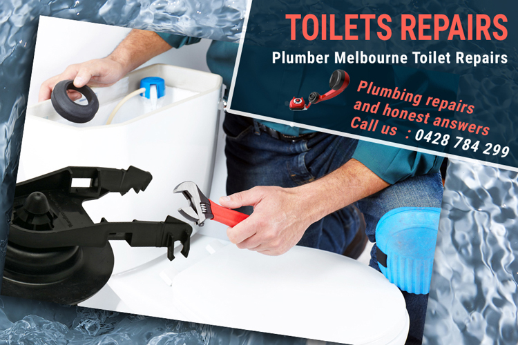 Toilet Replacements Bunkers Hill