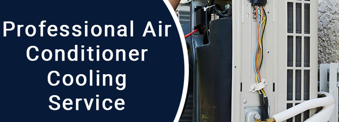 Professional Air Conditioner Cooling Service