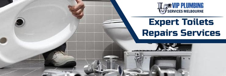 Toilets Repairs Service